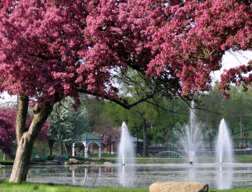 things to do in spring at Riverside Park