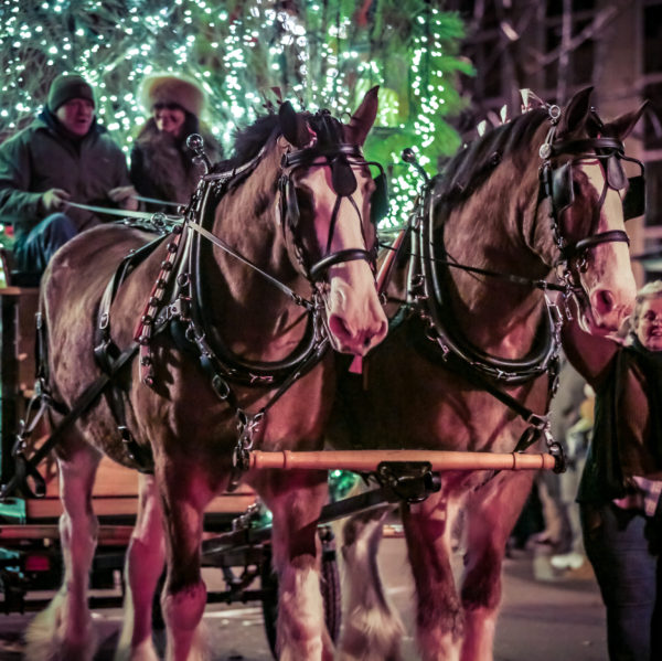 Grand Lighted Holiday Parade