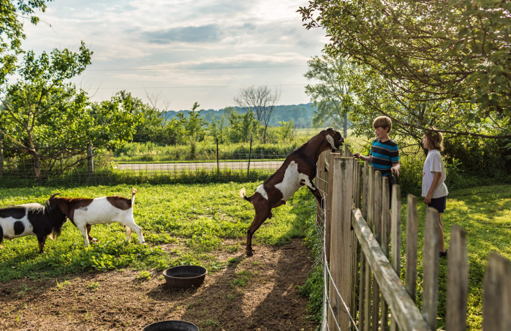 family getaway at Double B Farm & Country Cafe