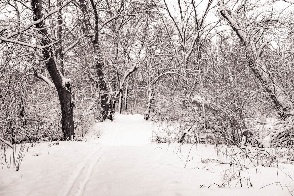 hitting a trail is one of the things to do in winter in beloit