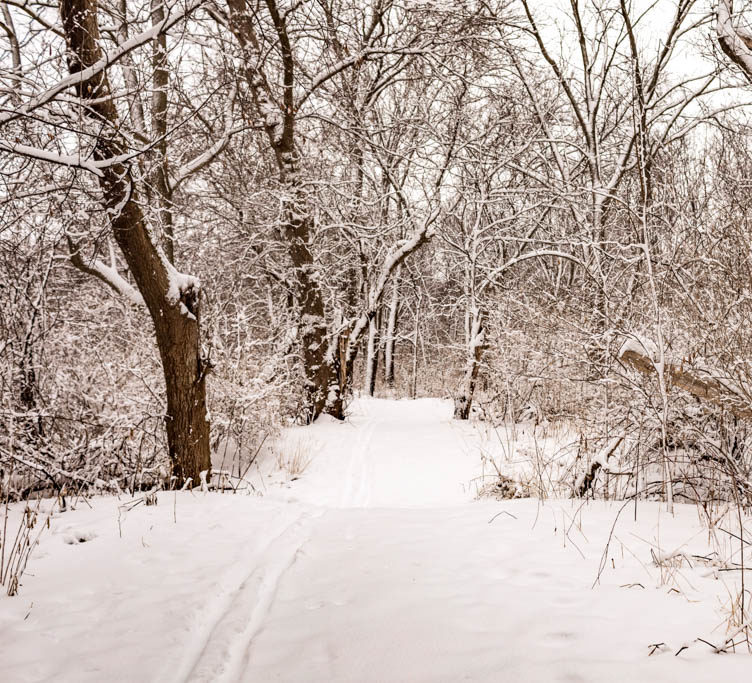 Winter Trail in Beloit